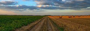 Agrarisch Areaal